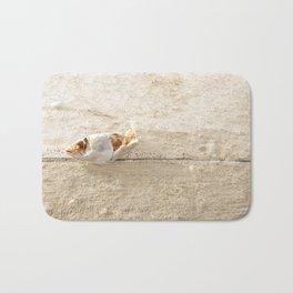 Lost Fish Bath Mat
