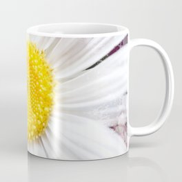 Daisy Flower Close-Up #1 #art #society6 Coffee Mug
