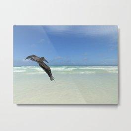 Pelican above the ocean Metal Print