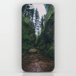 Oneonta Gorge iPhone Skin