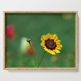 Coreopsis Flower Serving Tray