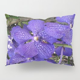 Purple Orchids Pillow Sham