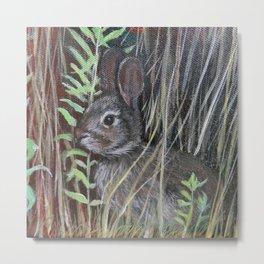 rabbit in field detail Metal Print
