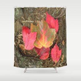 As the Seasons Turn Shower Curtain