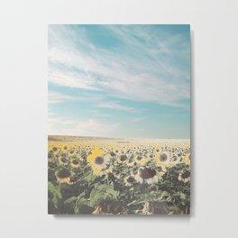 Muted Sunflowers Metal Print