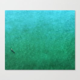 Otters Canvas Print