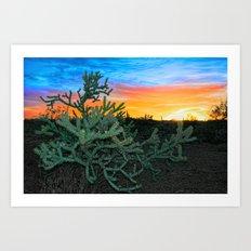 Cholla Solar Flare Art Print
