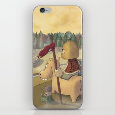 don chisciotte iPhone & iPod Skin