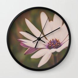 Daisy Flower Photograph Wall Clock
