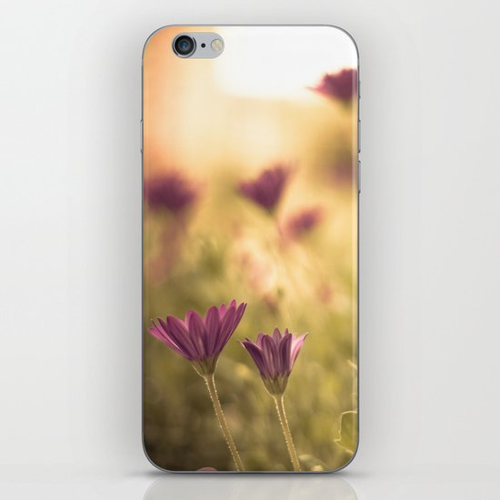 Sun in the meadow  iPhone & iPod Skin