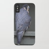 millenium falcon iPhone & iPod Cases featuring Falcon by Sarah Shanely Photography