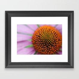 Cone Close Framed Art Print