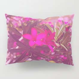 Vibrant as a Desert Rose Pillow Sham