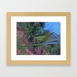 the green thing Framed Art Print