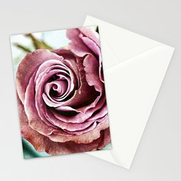 Gritty Vintage Dusty Pink Rose Stationery Cards