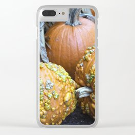 Longwood Gardens Autumn Series 332 Clear iPhone Case