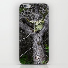 Forest Spirit Skull iPhone Skin