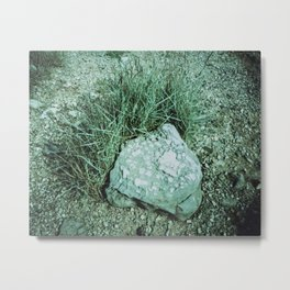 GREEN PICTURE OF A ROCK Metal Print