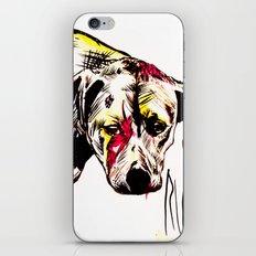 The sadness of streetdogs iPhone & iPod Skin