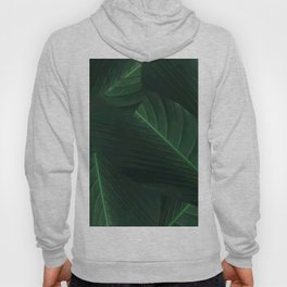 Banana palm greens tropical forest Hoody