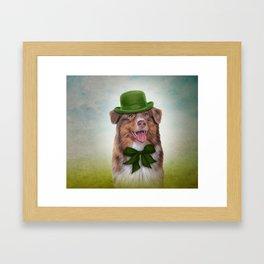Dog breed Australian Shepherd, Aussie Framed Art Print