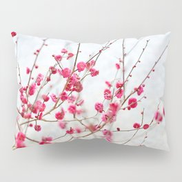 Beautiful Cherry Blossoms at the Imperial Palace in Kyoto, Japan Pillow Sham