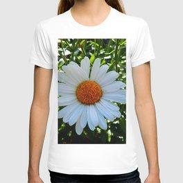 Single White Daisy T-shirt