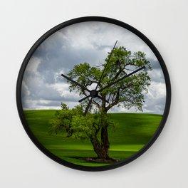 Single Tree in Green Field Wall Clock