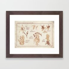 Herbology Reference Chart (Hogwarts) Framed Art Print