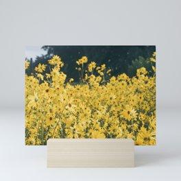 Daisies For Days Mini Art Print