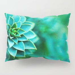 Green Succulent Mandala Pillow Sham