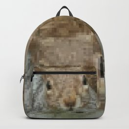 The other faces of Squirrel 4 Backpack