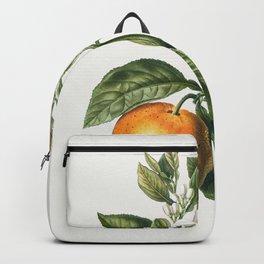 Vintage Scientific Encyclopedia Illustrations Flower Tropical Orange Blossom Backpack