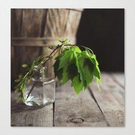 Green & Brown Canvas Print