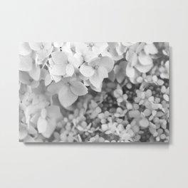 Flowers Blooming (Black and White) Metal Print
