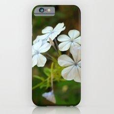 White little flower iPhone 6s Slim Case