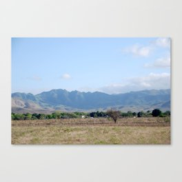 The Bystander Canvas Print