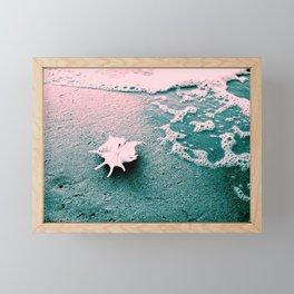 Shell on the beach 02 Framed Mini Art Print