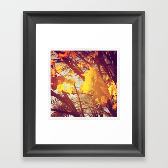 Yellow to Gold Framed Art Print