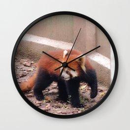 Chongqing Red Panda | Panda roux Wall Clock