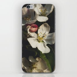 Moody crabapple blossoms iPhone Skin