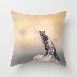 Young Cheetah sitting on a rock Throw Pillow