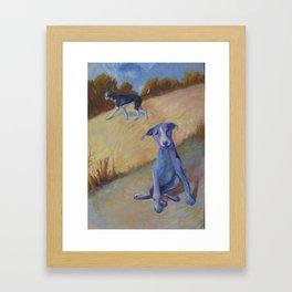 Pariah Dogs Framed Art Print