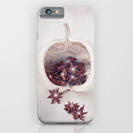 WINTER SECRETS iPhone & iPod Case