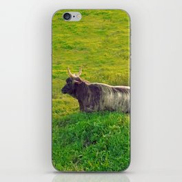 Cattle iPhone Skin