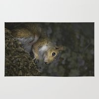 squirrel Area & Throw Rugs featuring Squirrel by Judith Lee Folde Photography & Art