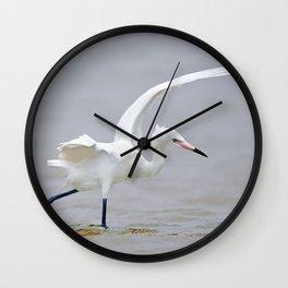 White Phase Reddish Egret Hunts in the Gulf Wall Clock