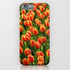 tulip field iPhone 6s Slim Case