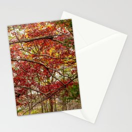 Letchworth Trees Stationery Cards