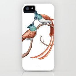 Indian Paradise Flycatcher (Terpsiphone paradisi) iPhone Case